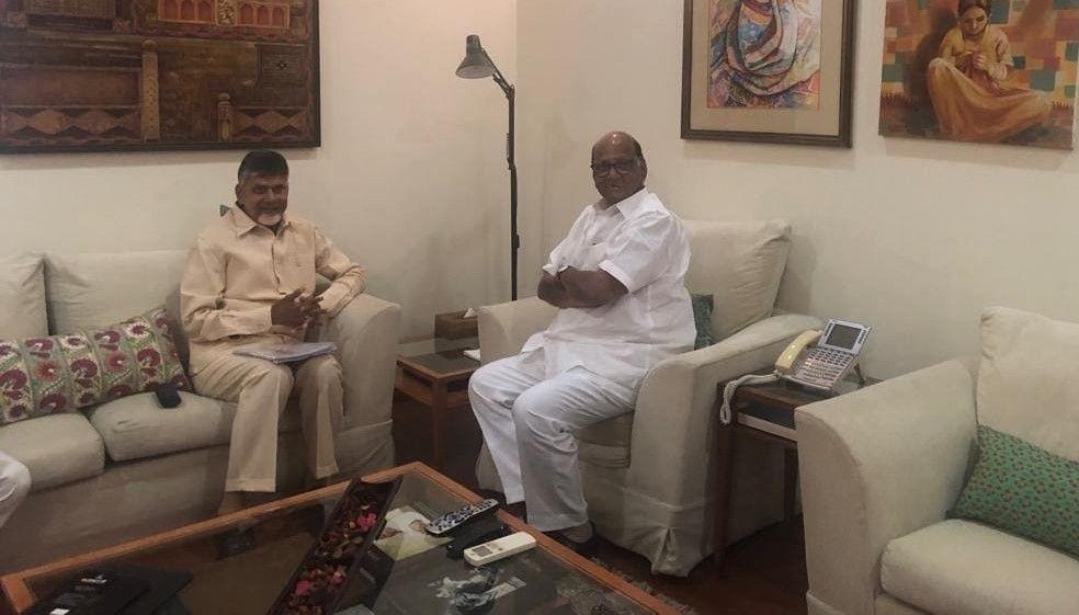 tdp chandrababu naidu loksabha election 2019 - Satya Hindi