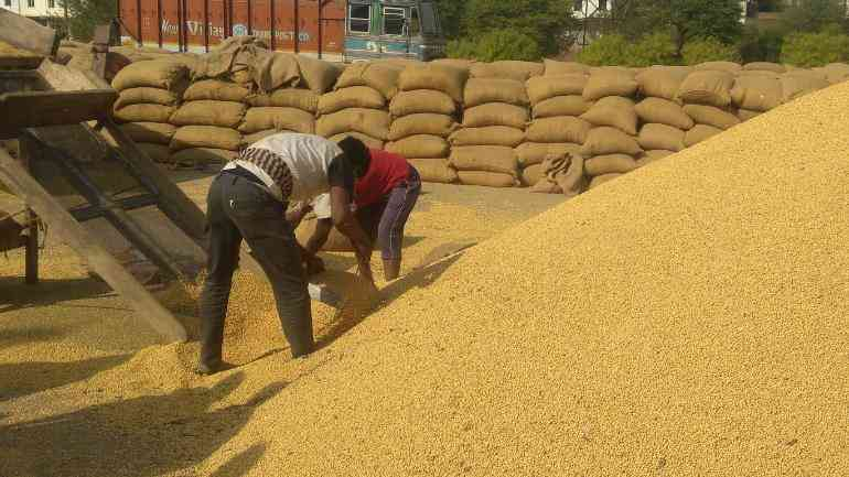 why does minimum support price fail to help farmers? - Satya Hindi